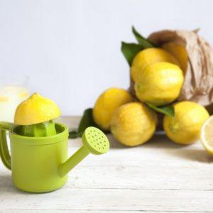 Lemoniere - מסחטת מיץ לימון. מתנות לפסח 2020, מתנות לחג לעובדים