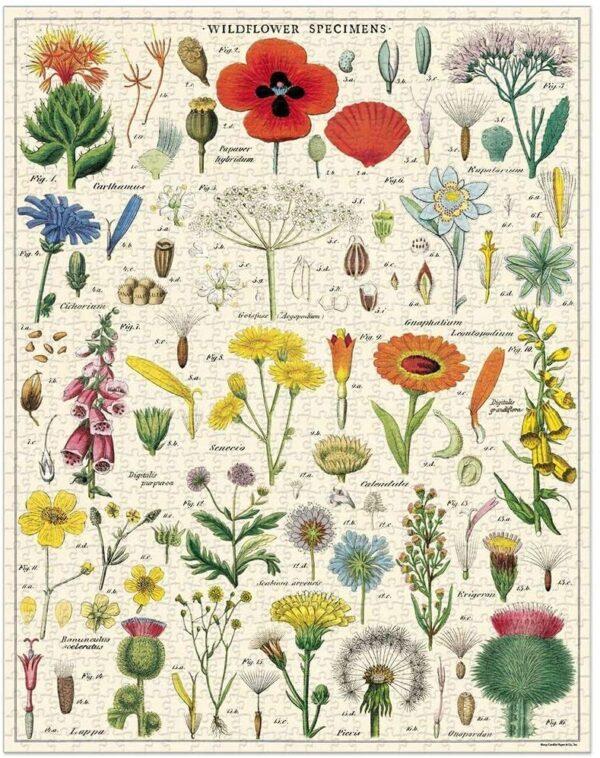 GREEN QUEEN - פאזלים למבוגרים - פאזל 1000 חלקים: Wildflowers