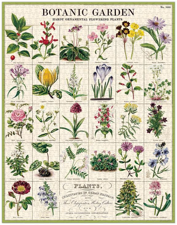 GREEN QUEEN - פאזלים למבוגרים - פאזל 1000 חלקים: Botanic Garden
