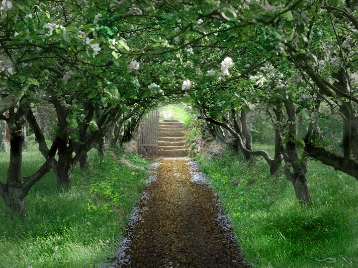 הבטחה, שינוי ירוק, הסיפור המלכותי, רויטל ורד - טבע